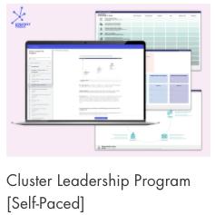 Cluster Leadership
